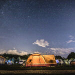 Camping Zelte Natur Wildlife